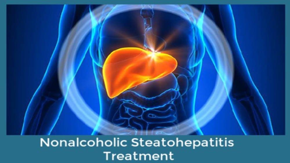 <p>Nonalcoholic Steatohepatitis Treatment Market</p>