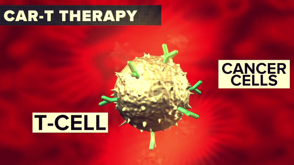<p>CAR T Cell Therapy Market</p>