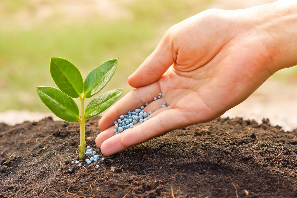 <p>Phosphatic Fertilizers Market</p>