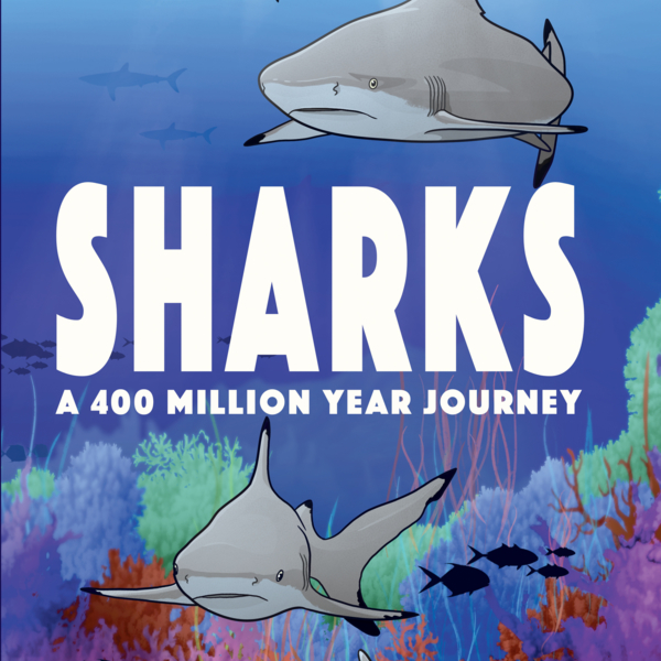 incredible-epoch-spanning-illustrated-history-of-sharks