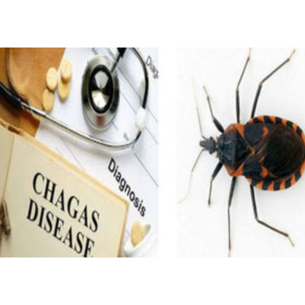 chagas-disease-treatment-market-to-surpass-us-10-29-mn-threshold-by-2026